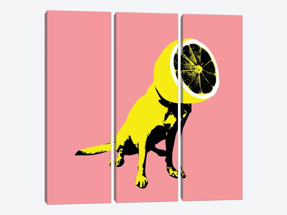 Lemon, Square by Ali Gulec 3-piece Canvas Art Print