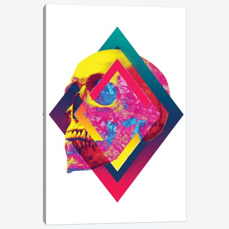 Lifeful Skull I Canvas Print #AGC70} by Ali Gulec Canvas Wall Art