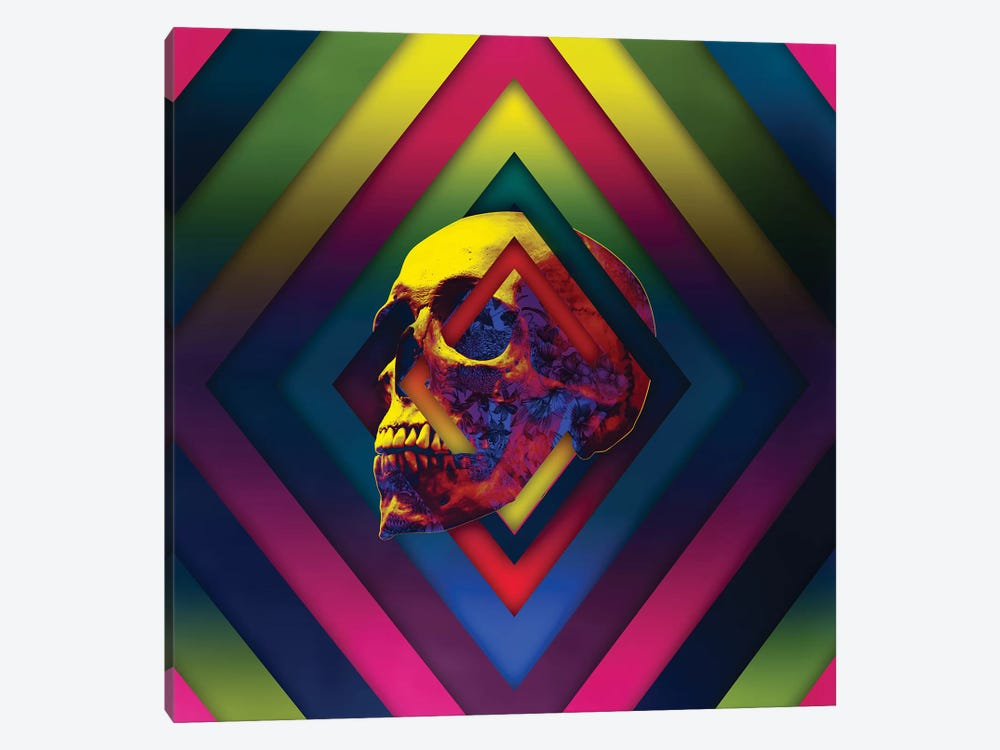 Lifeful Skull II by Ali Gulec 1-piece Canvas Artwork