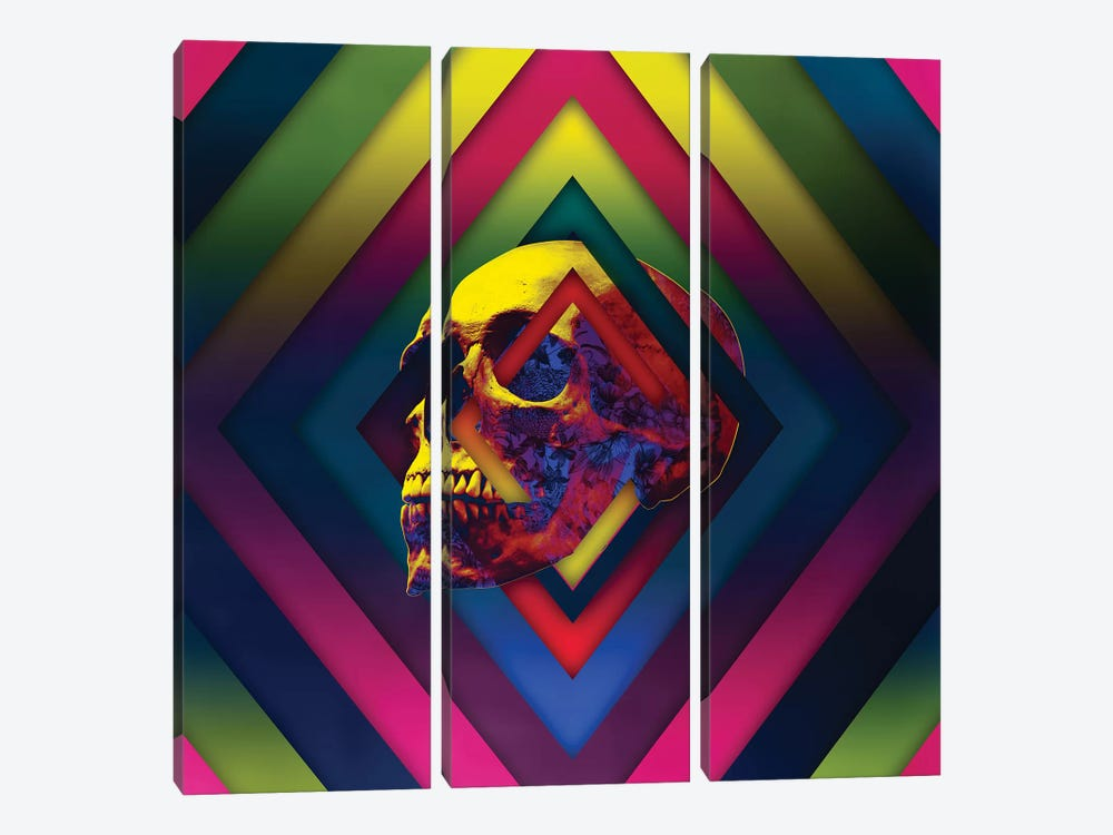 Lifeful Skull II by Ali Gulec 3-piece Canvas Artwork