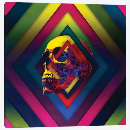 Lifeful Skull II Canvas Print #AGC71} by Ali Gulec Canvas Artwork