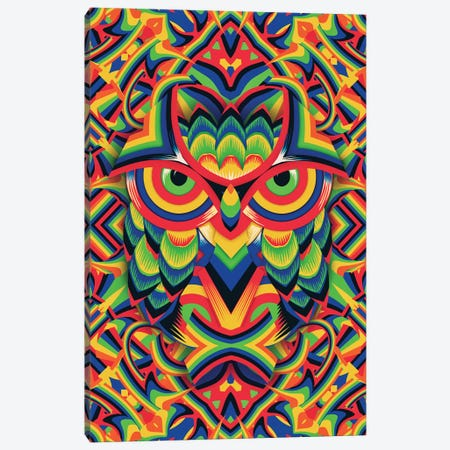 Owl 3 Canvas Print #AGC79} by Ali Gulec Canvas Artwork