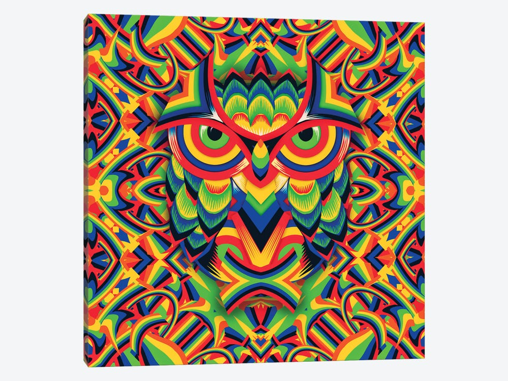 Owl 3, Square by Ali Gulec 1-piece Canvas Artwork