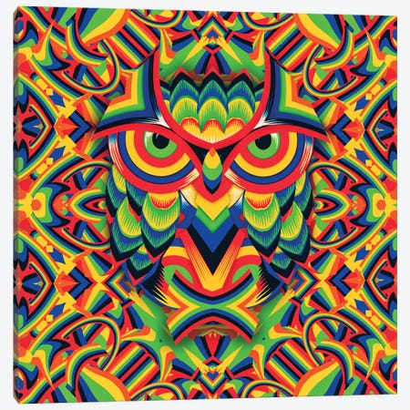 Owl 3, Square 3-Piece Canvas #AGC80} by Ali Gulec Canvas Art Print