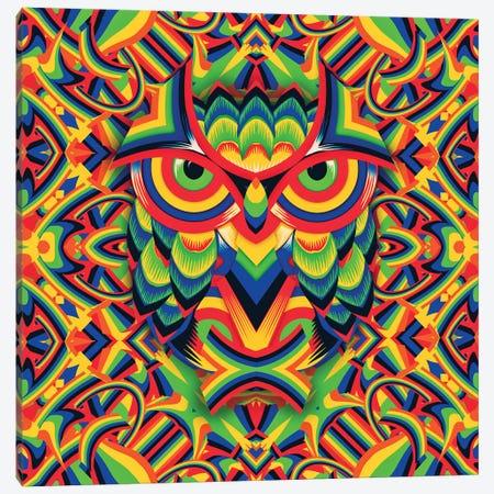 Owl 3, Square Canvas Print #AGC80} by Ali Gulec Canvas Art Print
