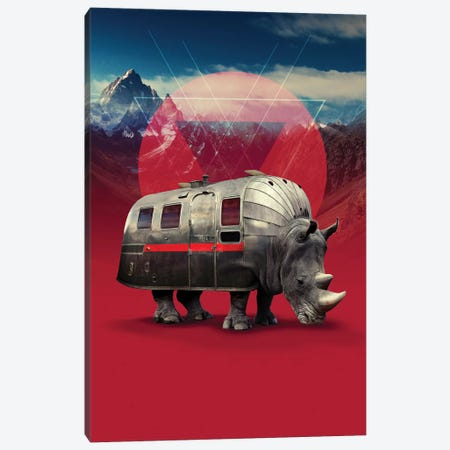 Rhino Canvas Print #AGC81} by Ali Gulec Canvas Art Print