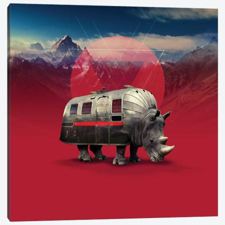 Rhino, Square Canvas Print #AGC82} by Ali Gulec Art Print