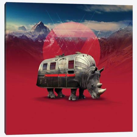Rhino, Square Canvas Print #AGC82} by Ali Gulec Art Print
