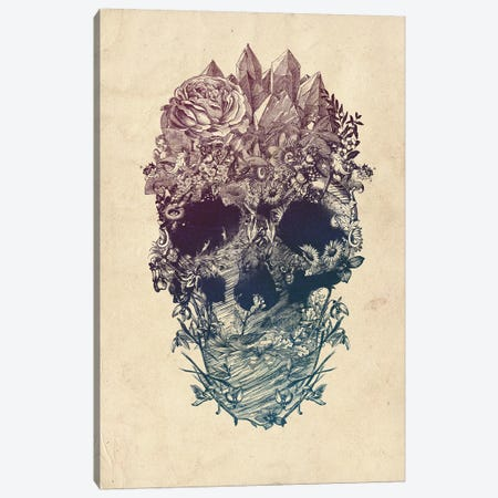 Skull Floral Canvas Print #AGC88} by Ali Gulec Canvas Print