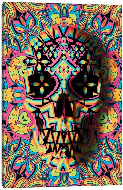 Skull Geo Canvas Art Print