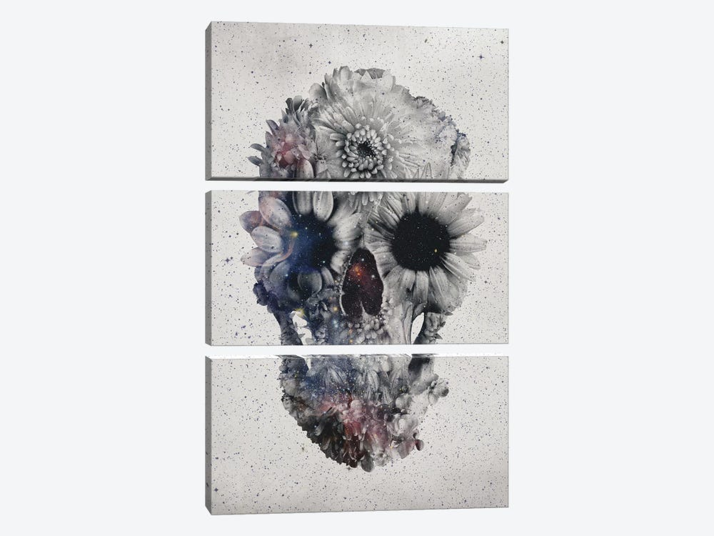 Floral Skull #2 by Ali Gulec 3-piece Canvas Art Print