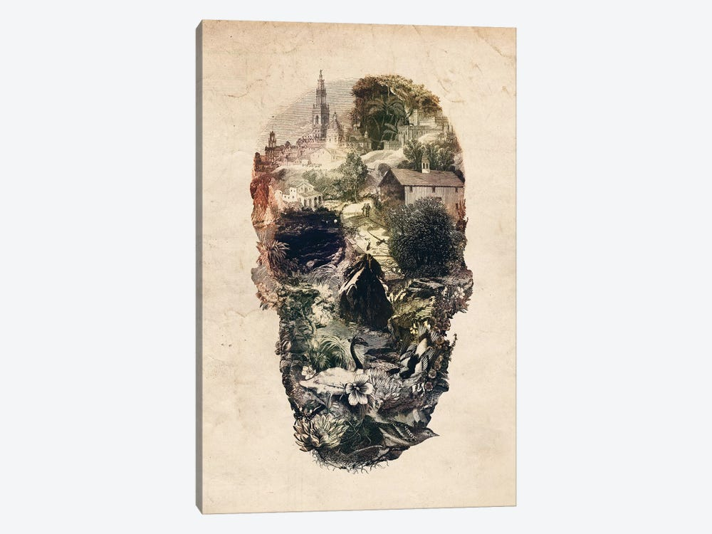 Skull Town by Ali Gulec 1-piece Canvas Artwork