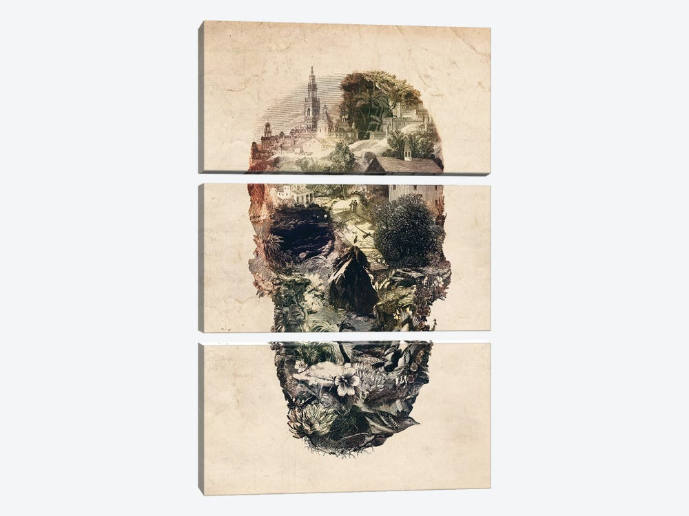 Skull Town by Ali Gulec 3-piece Canvas Artwork