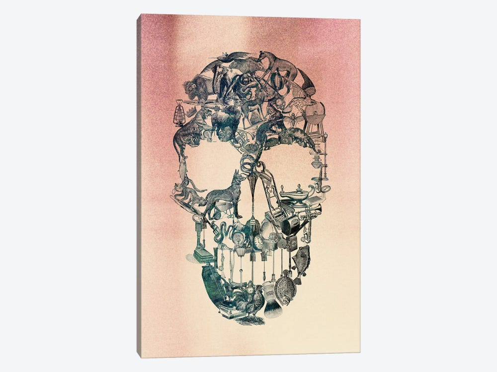 Skull Vintage by Ali Gulec 1-piece Canvas Artwork