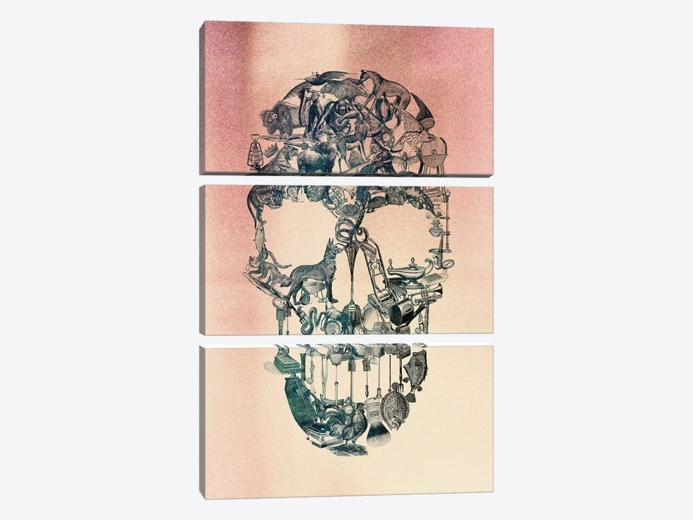 Skull Vintage by Ali Gulec 3-piece Canvas Art