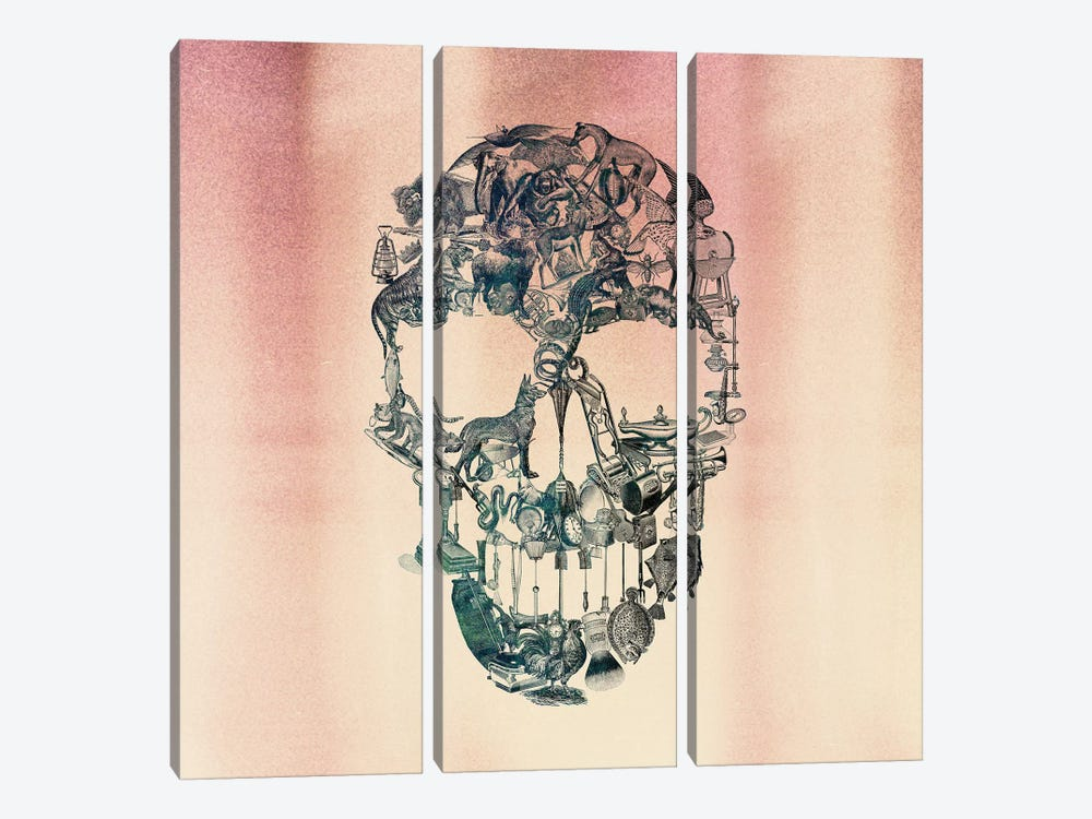 Skull Vintage, Square by Ali Gulec 3-piece Canvas Print