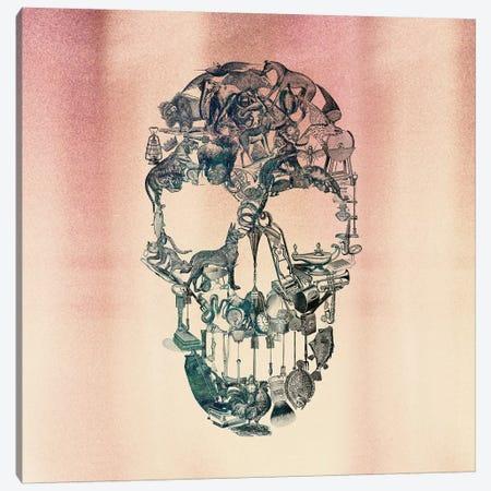 Skull Vintage, Square Canvas Print #AGC94} by Ali Gulec Canvas Art Print