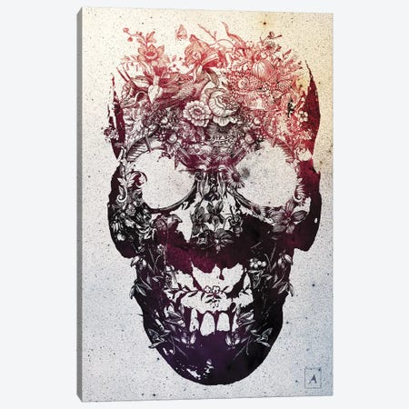 Floral Skull Canvas Print #AGC9} by Ali Gulec Canvas Artwork