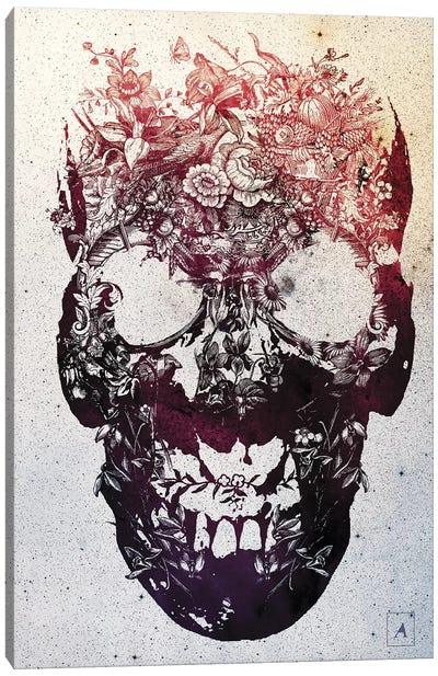 Floral Skull Canvas Art Print