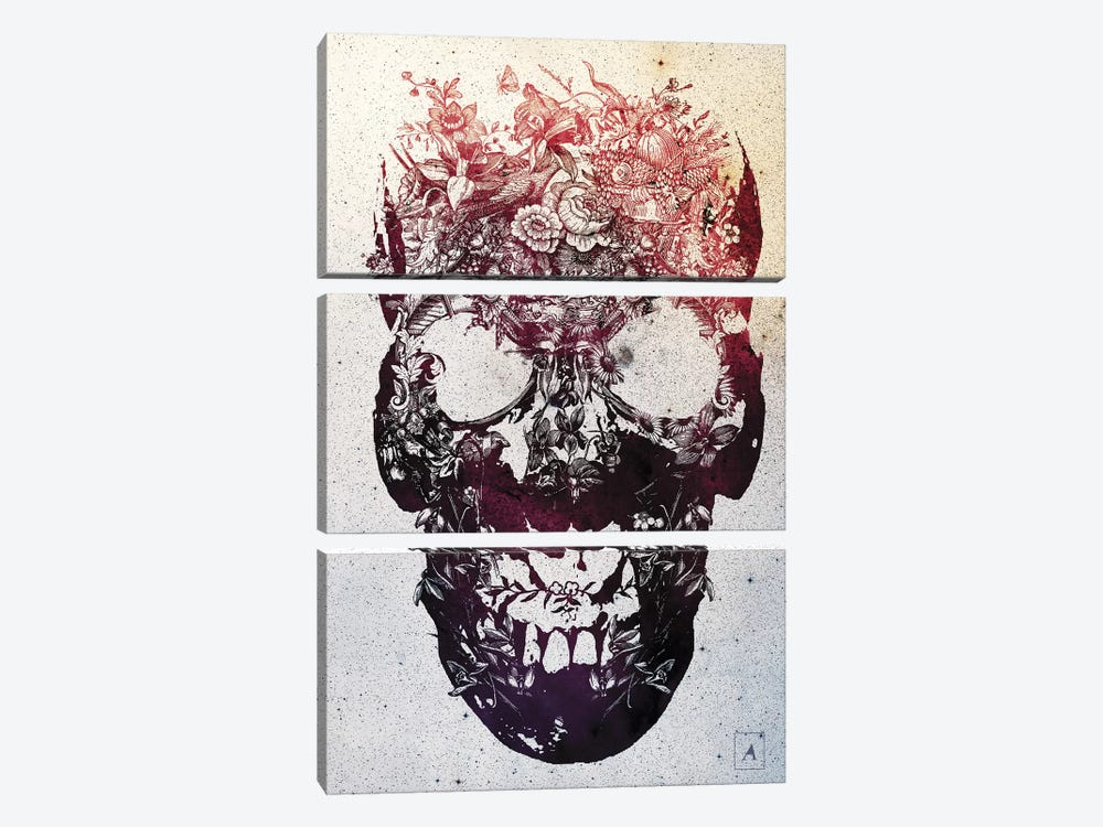 Floral Skull by Ali Gulec 3-piece Canvas Art