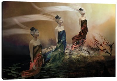 Letting Go Canvas Art Print