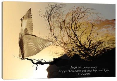 Angel With Broken Wings Canvas Art Print