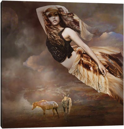 Ascending Beyond Canvas Art Print