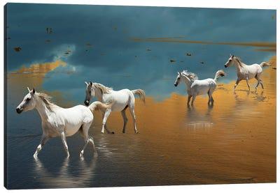 Born Free Canvas Art Print
