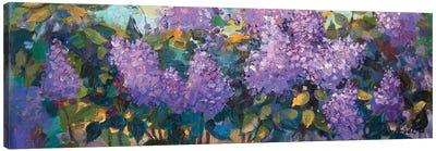 Lilac Canvas Art Print