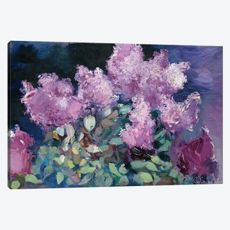 Night Lilac Canvas Print #AGG137} by Anastasiia Grygorieva Canvas Artwork