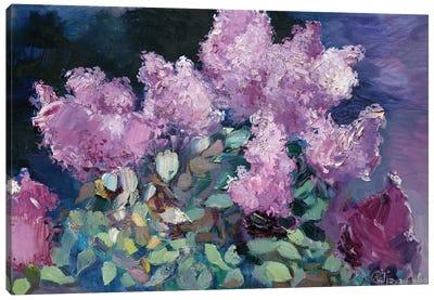 Night Lilac Canvas Art Print
