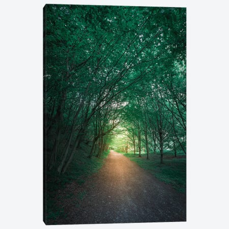 Calming Nature II Canvas Print #AGN10} by Andrea Dall'Agnola Art Print