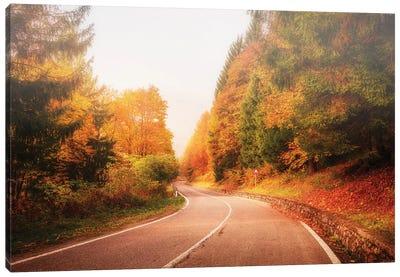 Autumn Road Canvas Art Print