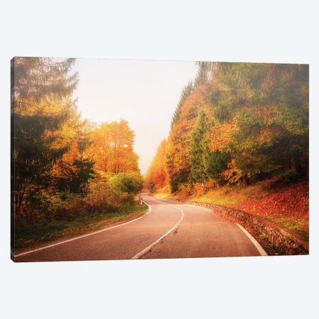 Autumn Road Canvas Print #AGN6} by Andrea Dall'Agnola Canvas Art