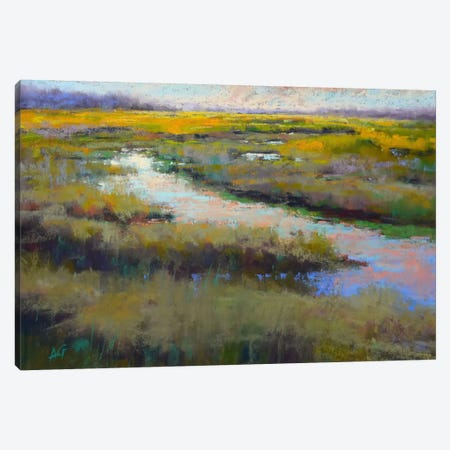 A Glimmer On The Marsh Canvas Print #AGO1} by Alejandra Gos Canvas Art