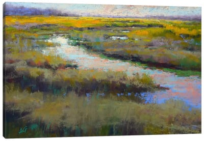 A Glimmer On The Marsh Canvas Art Print