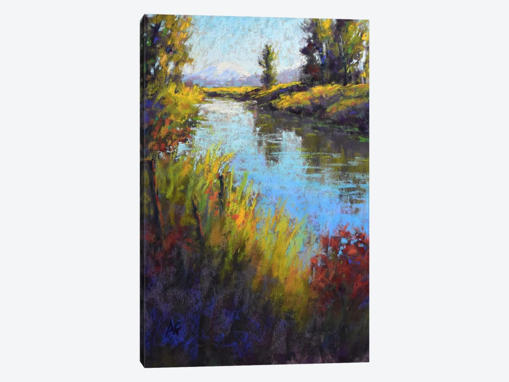 Looking Down The Slough by Alejandra Gos 1-piece Canvas Art Print
