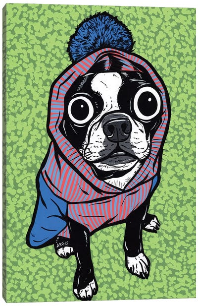 Boston Terrier Pom Sweater Canvas Art Print