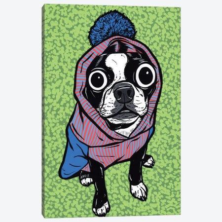 Boston Terrier Pom Sweater 3-Piece Canvas #AGU114} by Allyson Gutchell Canvas Art