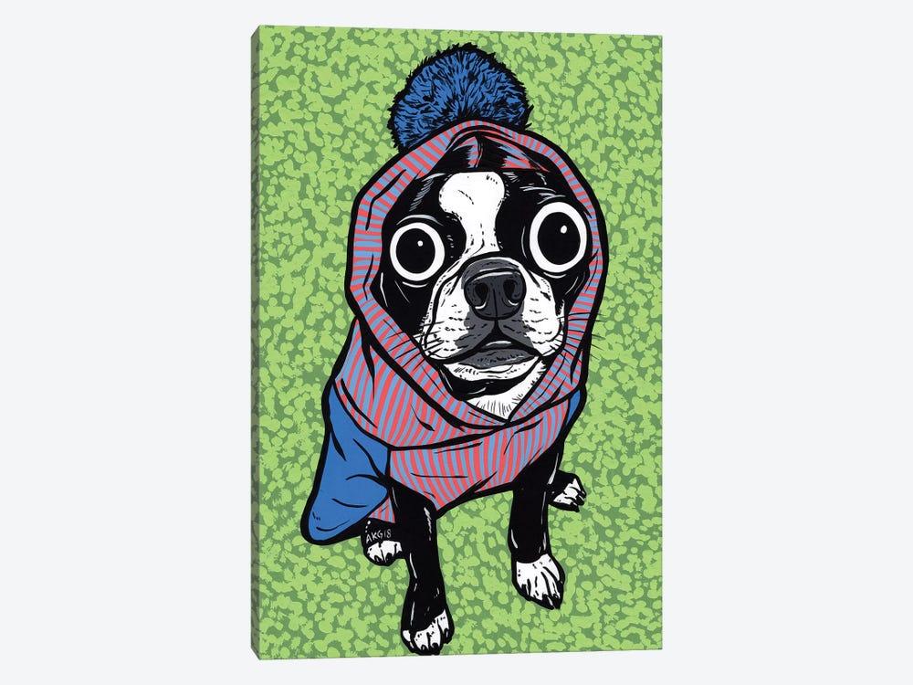 Boston Terrier Pom Sweater by Allyson Gutchell 1-piece Canvas Print