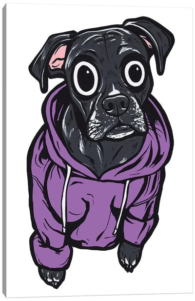 Black Lab Hoodie Canvas Art Print