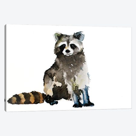 Raccoon Canvas Print #AGY100} by Allison Gray Canvas Art