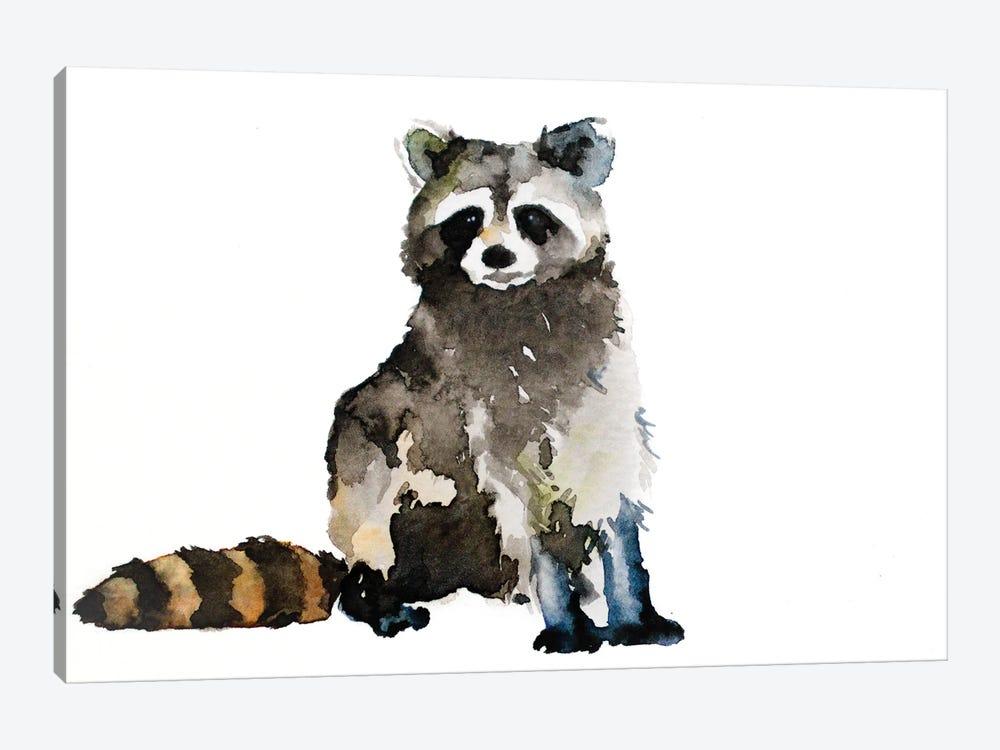 Raccoon by Allison Gray 1-piece Canvas Print