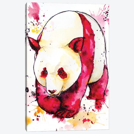 Red Giant Panda Canvas Print #AGY101} by Allison Gray Canvas Wall Art