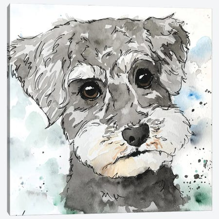 Schnoodle Canvas Print #AGY110} by Allison Gray Art Print