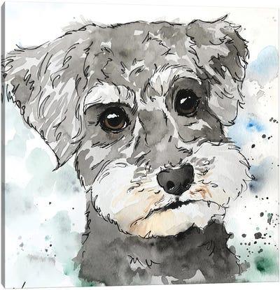 Schnoodle Canvas Art Print
