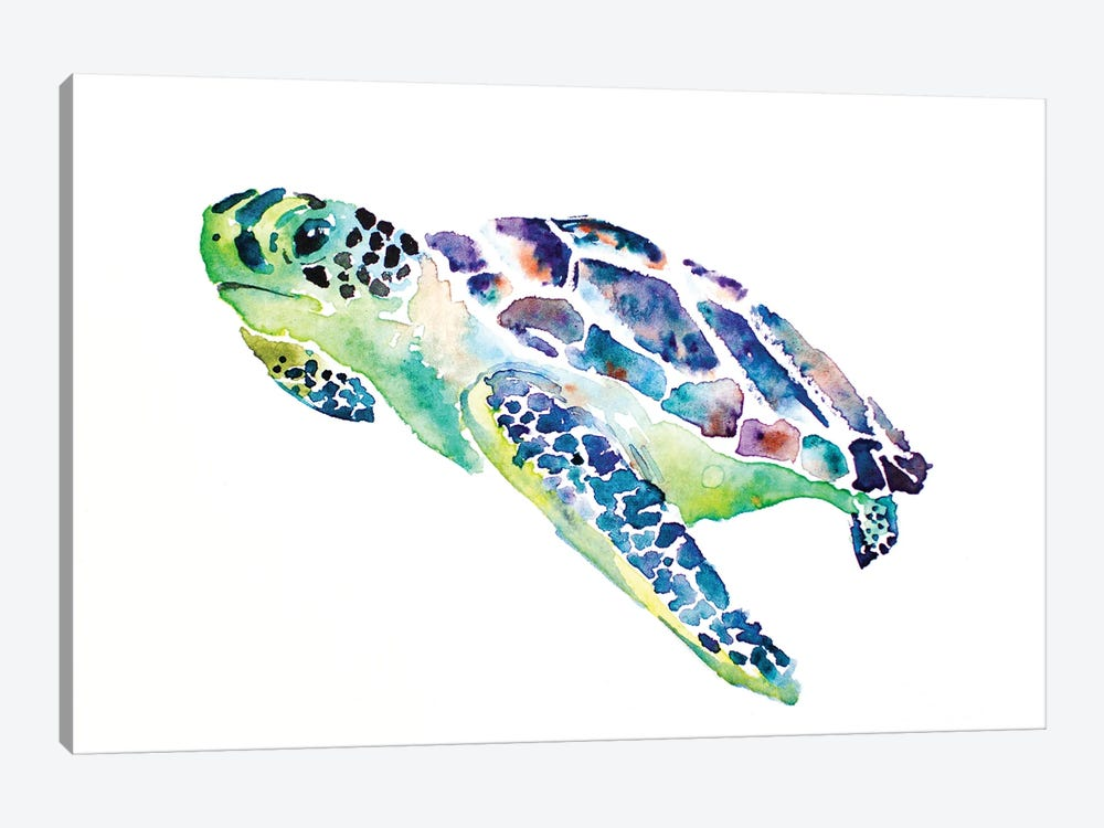 Sea Turtle by Allison Gray 1-piece Canvas Print