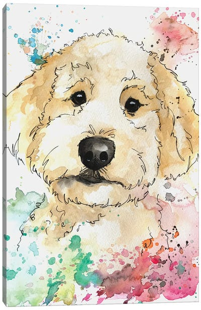 Summer Colors Golden Doodle Canvas Art Print