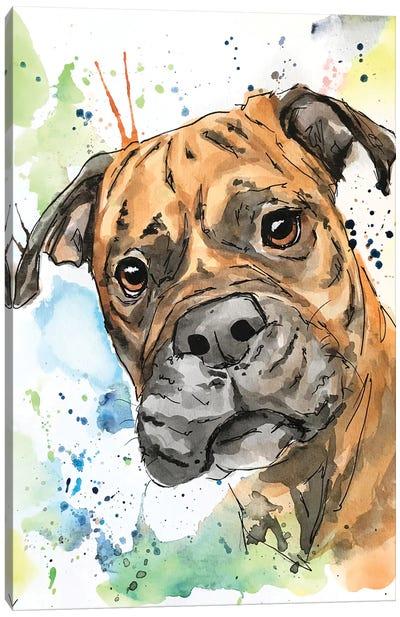 The Brindle Boxer Canvas Art Print