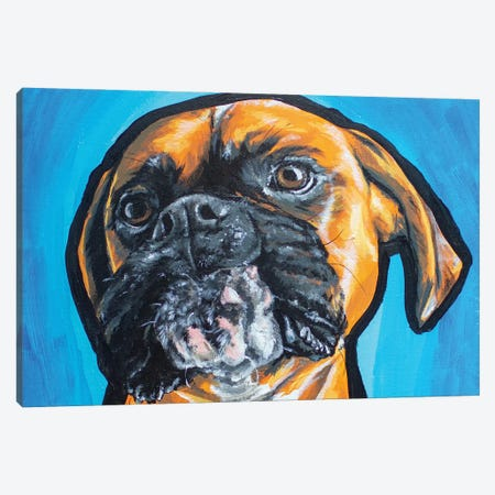 Boxer Acrylic Canvas Print #AGY12} by Allison Gray Canvas Art